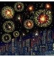 Festive Firework Skyline Image vector image