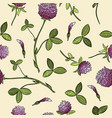 red clover botanical seamless pattern vector image