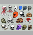 scull heads vector image vector image