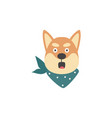 surprised and scared shiba inu dog head isolated vector image vector image