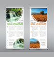 template of a vertical roll up banner for vector image vector image
