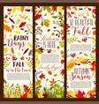 autumn or fall seasonal banners set vector image