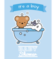 Bear in the bath vector image