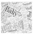 Breast Feeding And Jaundice Word Cloud Concept vector image vector image