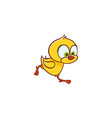 flat cute chicken chick running vector image vector image