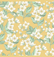 jasmine floral pattern vector image vector image