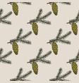 sitka spruce branch seamless pattern vector image
