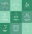 Bugs Logo vector image vector image