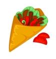 Burrito roll shawarma or gyros pita vector image vector image