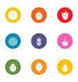 cantaloupe icons set flat style vector image vector image