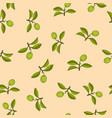 citrus lime branch seamless pattern vector image vector image