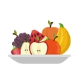 fruit salad plate isolated icon vector image vector image