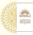 mandala boho style flyers vector image