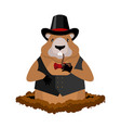marmot in hat and with pipe rodent aristocrat for vector image vector image