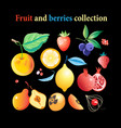 set bright tasty fruits and berries vector image vector image