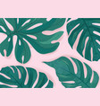tropcal palm leaves beautiful background summer vector image