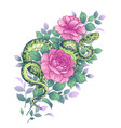 twisted snake and pink rose flowers vector image vector image