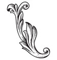 baroque vintage element for design vector image vector image