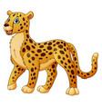 cartoon funny cheetah vector image vector image