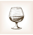 Cognac in glass sketch style vector image