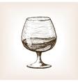 Cognac in glass sketch style vector image vector image