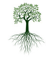 green tree with leaves outline vector image vector image