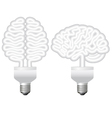 human brain bulb vector image vector image