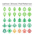 leaf line icon vector image vector image