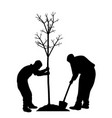 planting a tree vector image vector image