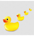 rubber ducks isolated transparent background vector image vector image