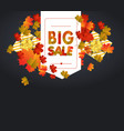 sales banner with autumn leaves vector image