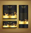 shiny golden bokeh luxury banner vector image vector image