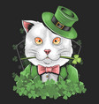 st patrick s day cute cat vector image vector image