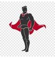 Superhero comics style vector image vector image