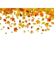 Background of autumn leaves EPS 8 vector image vector image