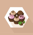 delicious cupcakes set sweet dessert chocolate vector image vector image