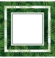 frame tropical palm leaf vector image vector image
