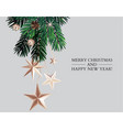 golden stars with fir branches hand-drawn winter vector image