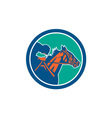 Horse Jockey Racing Circle Retro vector image vector image