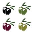 olive set vector image