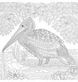 pelican or crane bird adult coloring page vector image vector image