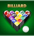 set all billiard balls in triangle vector image