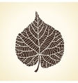 Stylized detail silhouette of leaf isolated on vector image vector image