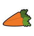 carrots vegetable icon vector image vector image