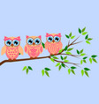 cute girl owls baby showers parties for baby girls vector image