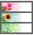 floral background Horizontal banner vector image vector image