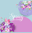 floral spring graphic design with blossom flowers vector image vector image