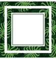 frame tropical palm leaf and monstera vector image vector image