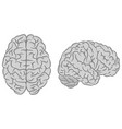 gray brain silhouettes set vector image vector image