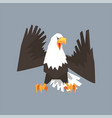 north american bald eagle character symbol of usa vector image